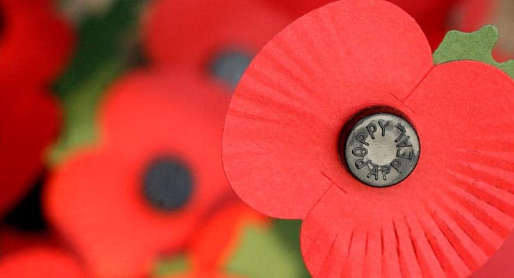 PERSPEX ACRYLIC POPPY 320mm tall ..10/% OF SALE GOES TO THE ROYAL BRITISH LEGION