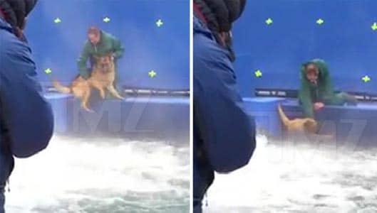 """Leaked video appears to show abuse on set of """"A Dog's Purpose"""""""